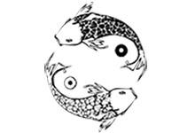 Логотип заведения Инь-Янь