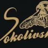 Соколовское темное BeerStein