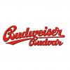 Budweiser (1) Draft & Craft